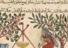 feat-arabic