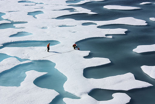 512px-Ponds_on_the_Ocean,_ICESCAPE